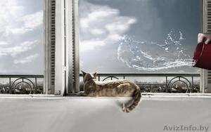 Ремонт окон,дверей ПВХ в Жодино. - Изображение #1, Объявление #992925