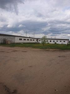 Аренда производственного помещения г. Жодино. - Изображение #1, Объявление #1653084