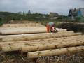 Требуются рабочие на деревообрабатывающее предприятие